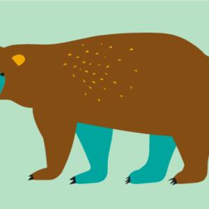 kaartje beer