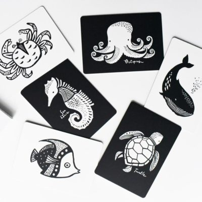 wee gallery - babykaarten / art cards oceaan ocean